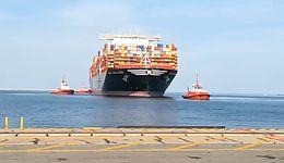 MSC Gülsün w Polsce. Największy kontenerowiec świata wpłynął do Gdańska