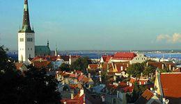 Jak budować biznes w Estonii? Wyjątkowa konferencja w Warszawie