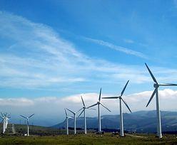 Tarcza prawna, rozwijanie farm wiatrowych i mniej chaosu w zabudowie. Wiceminister o pracach w resorcie