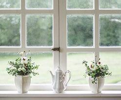 Świetne czasy dla producentów okien. Ekologia wymusi remonty