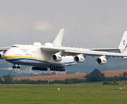 Koronawirus w Polsce. KGHM wynajął Antonowa An-225 Mrija poniżej ceny rynkowej
