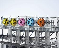 8, 12, 31, 39, 43, 45. Tajemniczy kod? Nie, to pierwsza szóstka w Lotto