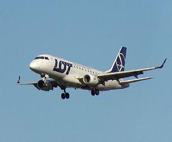 Loty z Poznania do Warszawy całkowicie zawieszone. Decyzja PLL LOT