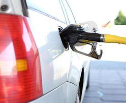 """Ceny benzyny. Na stacjach widać """"efekt szczepionki"""""""