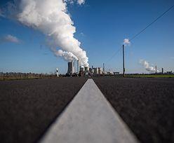 Narzekasz na ceny prądu? Zapytaj, co rząd robi z miliardami z emisji CO2