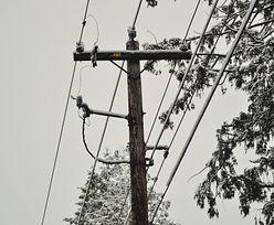 Zapotrzebowanie na energię elektryczną najwyższe w historii. Padł rekord