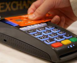Ile kosztuje terminal płatniczy? Może być bezpłatny!