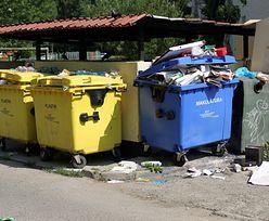Wywóz odpadów. 500 zł mandatu za unikanie płacenia