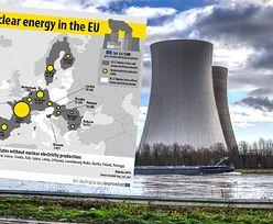 Elektrownie atomowe w UE. Trzy czwarte produkcji pochodzi z czterech krajów