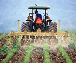 Rolnicy chcą ograniczyć napływ miastowych na wieś. Apel do premiera