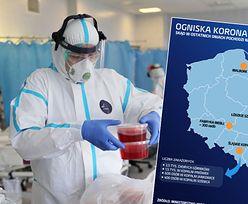 Koronawirus w Polsce. Ogniska w firmach, sklepach i kopalniach