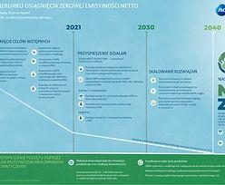 P&G intensyfikuje działania na rzecz klimatu dążąc do zerowej emisji netto gazów cieplarnianych do 2040 roku