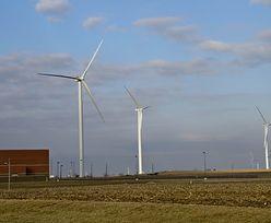 Wiatraki wracają? Rząd chce uelastycznić przepisy o dozwolonej odległości farm wiatrowych od zabudowań