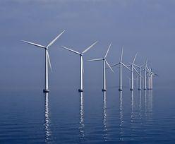 OZE w Polsce. Państwo będzie promować morskie farmy wiatrowe, jest ustawa