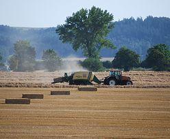 Europejscy rolnicy też mają ratować klimat. Dostaną na to 100 miliardów euro