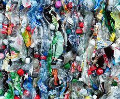 Będzie system kaucyjny za butelki plastikowe. Rząd przyspiesza prace