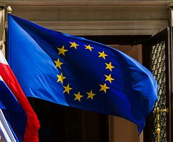 Kursy walut. Złoty traci na polityce EBC