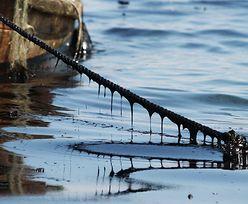 Awaria terminalu Orlenu. Do Bałtyku wyciekły nawet dwie tony ropy