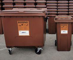 PGNiG chce produkować gaz ze śmieci. Sięgnie do brązowych kontenerów