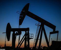 Amerykanie zamykają kolejne wiertnie ropy i gazu. Ograniczają wydobycie
