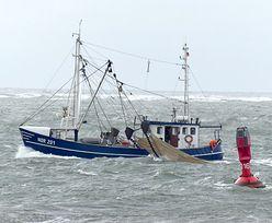 Połów dorsza. Naukowcy biją na alarm. UE wyznacza nowe limity na Bałtyku