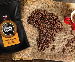 #moneypomaga. UPCAFE. Jesteśmy fanami kawy