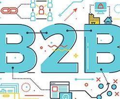 Platforma sprzedażowa B2B - czym powinna się charakteryzować?