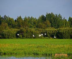 Pieniądze na inwestycje na obszarach Natura 2000