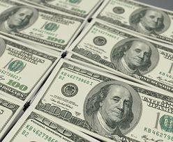 Kursy walut. Presja cenowa nie ustępuje