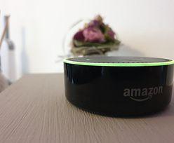 """Amazon wytycza drogę gigantom. Ludzie dobrowolnie zaprosili do domów ponad 100 mln """"zbieraczy danych"""""""