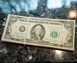 Kursy walut. Ciągle dużo pieniądza na rynku