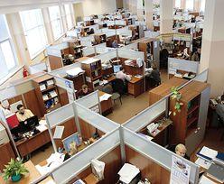 8 proc. firm planuje zwolnienia pracowników