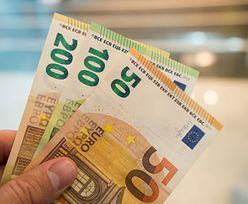 Kursy walut. Euro według Netfliksa powinno być po 4,26 zł