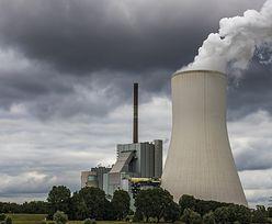 Elektrownia atomowa w Polsce. Komentarze po spotkaniu Trumpa i Dudy