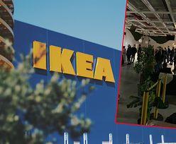 """Tłumy w IKEI w Jankach. Sieć reaguje. """"To podstawa do zweryfikowania naszych metod pracy"""""""