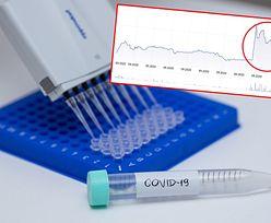 Szczepionka na COVID-19. Mabion dogadał się z australijskim Vaxine i akcje wystrzeliły