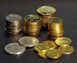 Kursy walut. W najbliższych dniach złoty pod presją, nie pomogły dane makro