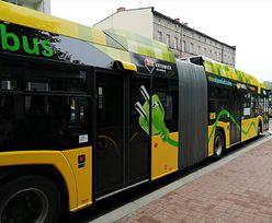 Cyfryzacja napędza transport publiczny w Metropolii