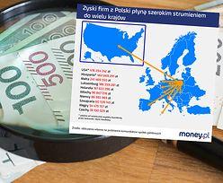 Milionowe zyski polskich spółek płyną za granicę. Zobacz gdzie i do kogo