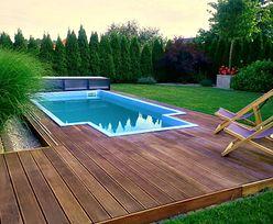 Prawdziwy basen pod domem za 10 tys. zł? Sprawdzamy, ile to kosztuje w budżetowej wersji