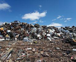 Przecięty Europejczyk wytwarza rocznie pół tony śmieci. Polacy w ogonie narodów zaśmiecających glob