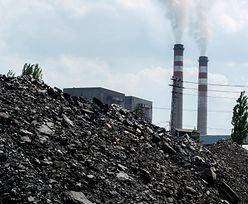 Inspektorzy sprawdzili składy węgla. Wykryli ponad sto nieprawidłowości