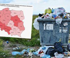 Nowy raport. Mamy problem ze śmieciami, co widać w cenach