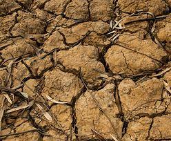 Susza. Parlament Europejski chce zwiększyć ilość ponownie wykorzystywanej wody