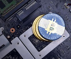 """Salwador wprowadza bitcoina. Kryptowalutowe """"wieloryby"""" wykorzystały okazję"""