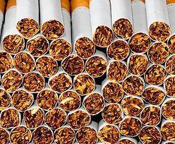 Próbowali przemycić papierosy. Pogrążyła ich skrytka w dachu