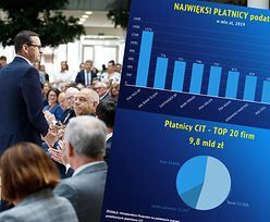 Najwięksi płatnicy CIT. Rekordzista dokłada do budżetu ponad miliard złotych