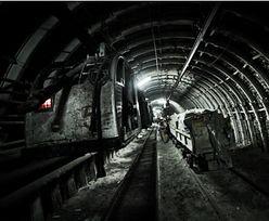 Najdłuższa ściana węgla znajduje się w Polsce. Bogdanka rozpoczyna wydobycie