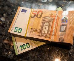 Kursy walut. Europejski Bank Centralny daje oznaki paniki