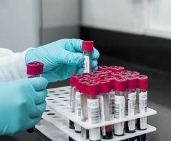 Polski lek na koronawirusa. Biomed wystartował z produkcją